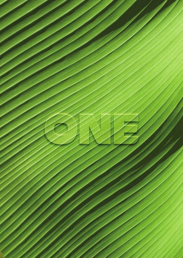 Financial information | Bank One